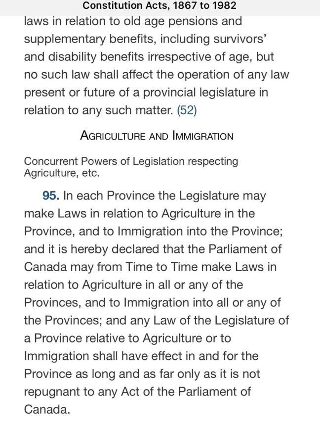 article 95.jpg